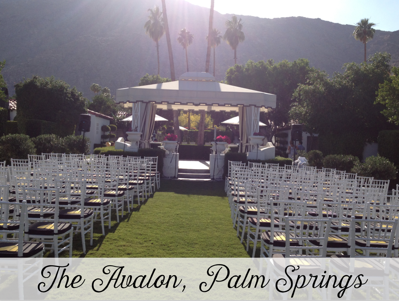 Avalon Palm Springs Wedding Planner